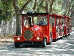 Take a tour of the old city with the St.Augustine Sightseeing Train
