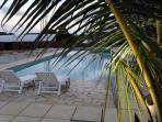 piscine 15X 5 mètres avec plage californienne