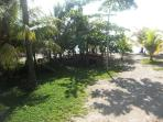 Front yard looking at beach..