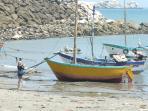 Paseo a Isla Foca a 5 km