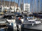 Boats in our beautiful harbour.