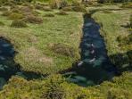 Sorgenti fiume Tirino percorso con guide specializ. Distanza 40 minuti di macchina