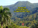 Located in the Foothills of El Yunque National Forest