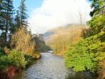 Nearby Benmore Botanic Garden walks