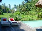 This is your personal view: on the heavenly rice fields of Bali!