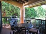 Main Lanai with BBQ off Living arm & Dining Rm