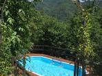 Forested pool area with deck.