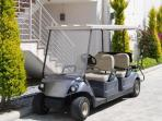 Golf buggies to take you to pools, cafe, marina, water taxi.