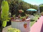 jardin Tulipano