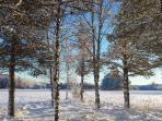 Winter in Vidsel