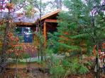 Surrounded by nature and secluded in the pines