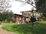 giardino del b&b ai glicini castel gandolfo