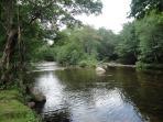 River behind the condo