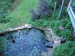 There is a lovely shade garden by the Koi Pond visible from the cottage deck