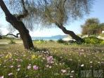 Spiaggia del Lido  in primavera.