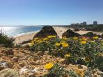 Alvor beach in May