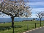 Beautiful Babbacombe Downs - 6 minute walk from Mariners Cottage.