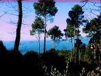 Portovenere e la Palmaria
