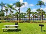 Palm Tree,Tree,Bench,Tropical,Park Bench