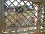 View through arbour seat back of long front decking.