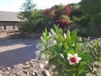 Tara Hill Lodge