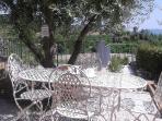 Giardino con olivo Gino, regalo di fidanzamento di mio marito Andrea