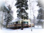 Enchanted cabin in snowy woods in winter