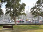 Rush cutter's Bay is home to the Cruising Yacht Club, which is open to Sydney visitors.