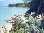 beautiful panoramic view of each & bay seen from #1's balcony with Folkstone marine park in distance