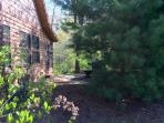 Another view of back patio, side of cabin.  Wooded wet lands right out back!