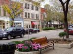 Downtown Saugatuck. Great for shopping, eating, hanging out and people watching! Terrific community!