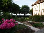 le jardin aux plantes aromatiques