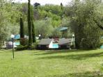 La piscina fra gli ulivi