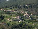 Le hameau de La Coste avec ses cultures en terrasse