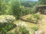 Garden, upper tier