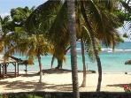 La plage de sable fin avec ses cocotiers