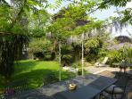 Secluded south facing, spacious garden