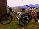 Mountain bike a disposizione dei nostri ospiti
