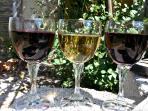 domestic vine