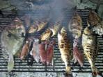 traditionally prepared Dalmatian food