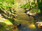 Lugar de baño en el río Irantzu junto a la casa