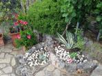 le nostre piante