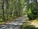 The start of the Cape Cod Rail Trail is only 1 mile away.