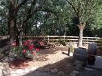 Private Rhododendron garden with fountain, barbeque and valley views trough the trees.