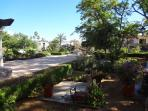 Our Pedregal Park and Hotel grounds