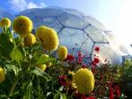 Eden project -- well worth a visit