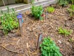 Custom herb garden - eat fresh!