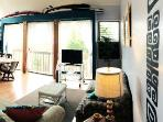 Clean bright cozy living room with high ceilings and  partial ocean views. TV and FREE WIFI.