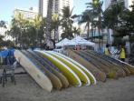 Board rentals at the Beach