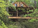 Rushing Waters River Tree house cabin